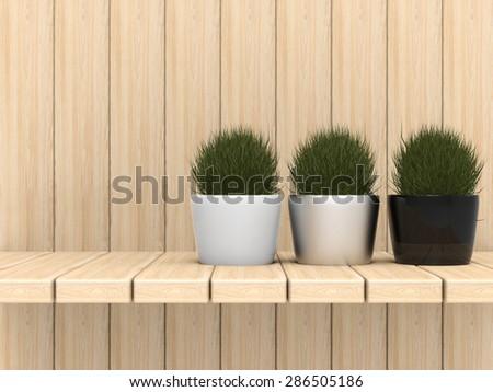 three pot plants on wooden backdrop - stock photo