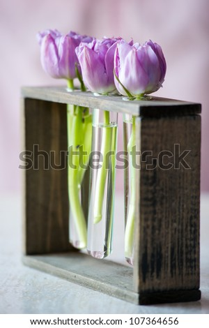 Three purple tulips in a small  glass flasks with water. Shallow DOF - stock photo