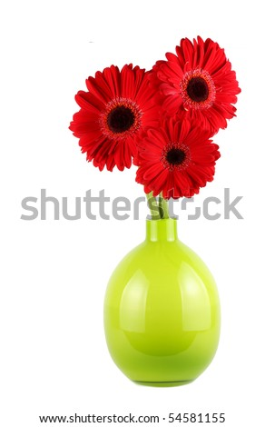 Three Red Daisy flowers in green glass vase - stock photo