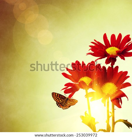 Three red flowers and butterfly under a bright warm sunny sky - stock photo