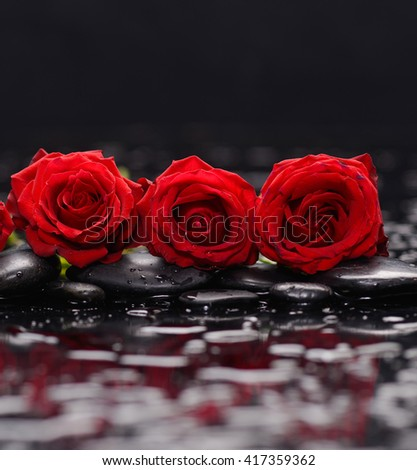 Three red rose and therapy stones  - stock photo