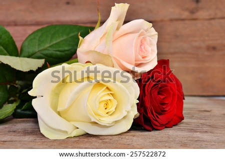 Three roses: red, white, pink lie on a wooden surface - stock photo