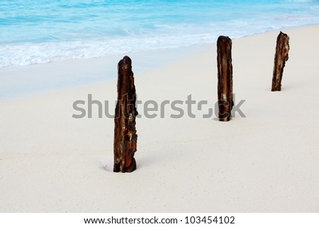 Three rusty sticks on the white beach - stock photo