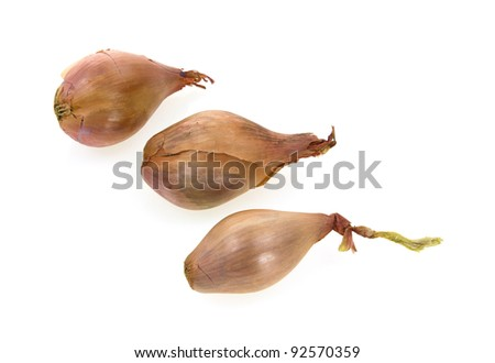 Three separate raw bulbous shaped shallots.