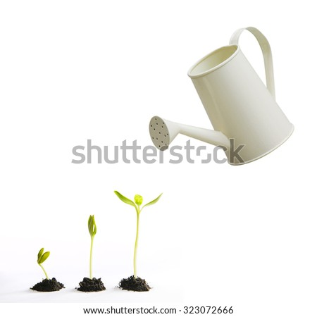 Three small tree with watering pot - stock photo