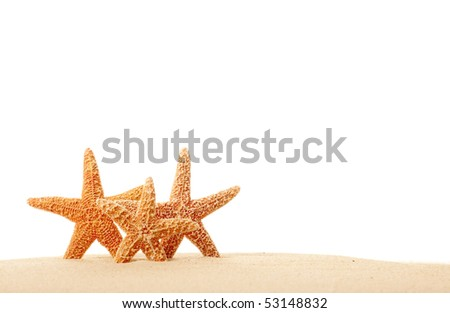 Three Starfish in Sand Isolated on White - stock photo
