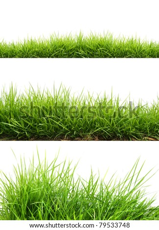 three style fresh spring green grass - stock photo