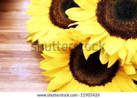 Three sunflowers on a wooden table - stock photo