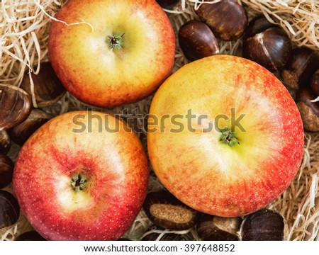 Three sweet apples and chestnuts in the box. Healthy food. - stock photo