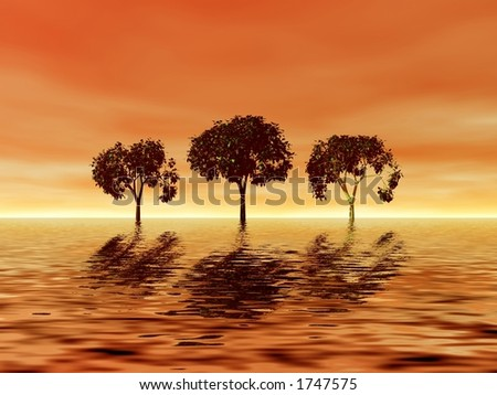 Three trees on golden sunset