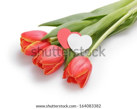 Three tulips with paper hearts, composition on white background - stock photo