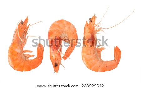 Three view of cooked shelled tiger shrimps isolated on white background  - stock photo