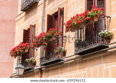 Three Window Balconies with Potted Red Flowers in Europe