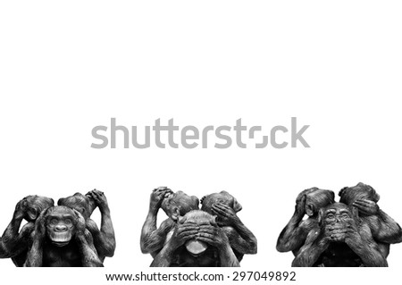 Three wise monkeys or Three Mystic Apes sacred ancient icon isolated on white background with clipping path. - stock photo