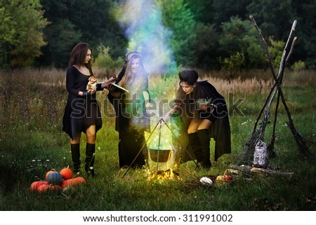 Three witches cook a potion in the meadow at night - stock photo