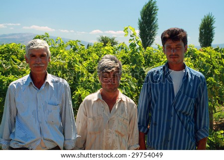 three workers posing in the vineyard before starting to work - stock photo