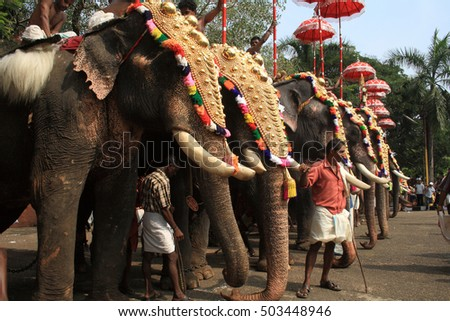 THRISSUR, INDIA - APRIL 24 : Decorated elephants stand in line for procession at Thrissur Pooram on April 24, 2010 in Thrissur, India. Thrissur Pooram is the most popular elephant festival in India.