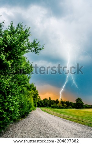 Thunder and lightning hits trees - stock photo