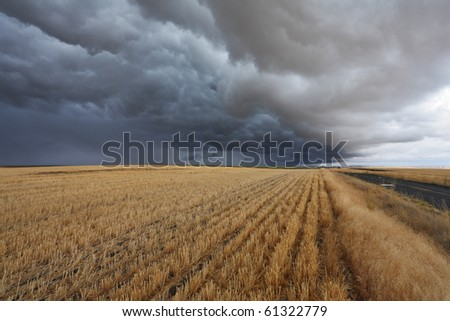 Thunderclouds above fields after harvesting. Montana, the USA - stock photo