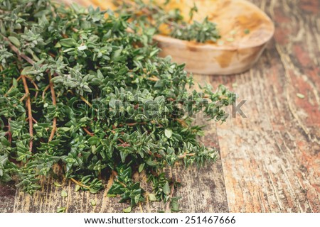 Thyme. Bunch of fresh Thyme on the rustic wooden table. A macro photograph with very shallow depth of field  - stock photo
