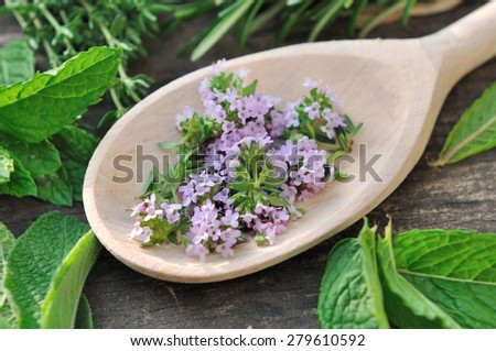 thyme flowers in a wooden spoon surrounded by various herbs - stock photo