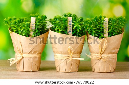 thesis on thyme To the graduate council: i am submitting herewith a dissertation written by jia xue entitled essential oil nanoemulsions prepared with natural emulsifiers for improved food safety.