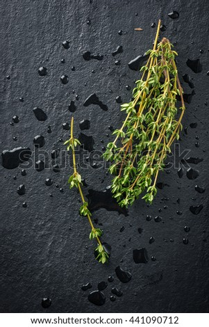 Thyme herbs - stock photo