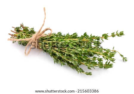 Thyme isolated on white background. - stock photo