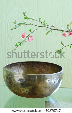 Tibetan singing bowl and flowering tree branch - stock photo
