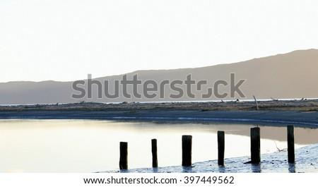 Tidal Posts infront of Kapiti Island, Waikanae, New Zealand. - stock photo
