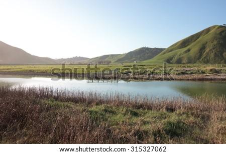 tidal river views, Marine Reserve, Pouawa, Gisborne, North Island, East Coast, New Zealand    - stock photo