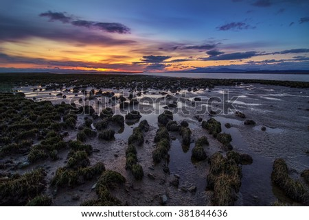 Tide recedes, wet grass on the beach, minimal sunlight provided by the sunset - stock photo