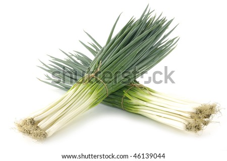 Tied bundle of fresh young onion - stock photo