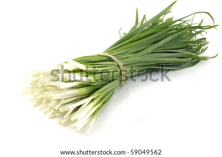 tied bundle of onions - stock photo