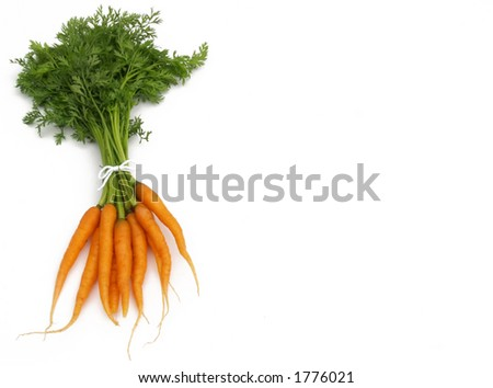 tied carrot bunch - stock photo