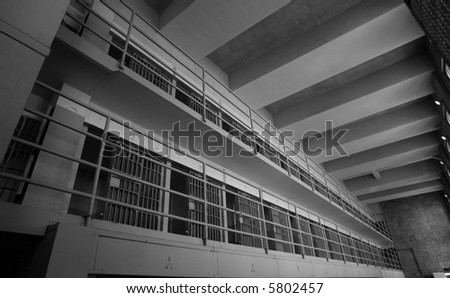 Tier, Alcatraz - stock photo