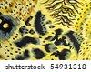 tiger fabric - stock photo