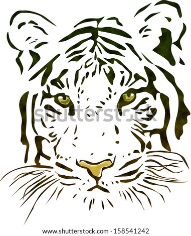 Tiger head - stock photo