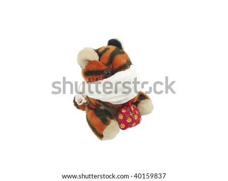 tiger in a bandage on a white background - stock photo
