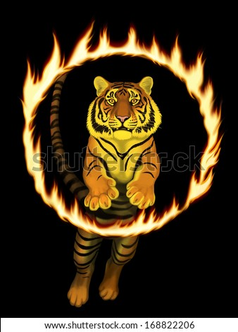 Tiger Jumps Through Ring of Fire - stock photo