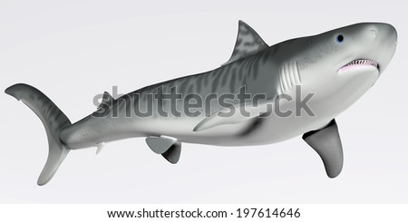 Tiger Shark Profile - The Tiger shark is a very large macropredator that can reach a length of 5 meters or 16 feet. - stock photo