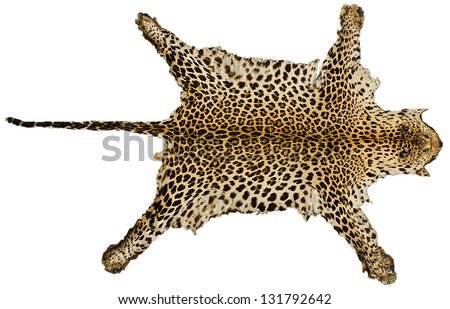 Tiger skin full body on white isolated background - stock photo