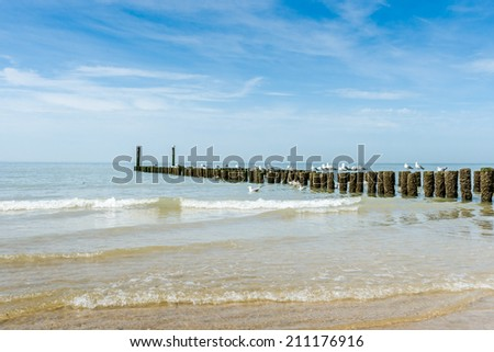 Timber groynes on the beach  at the north sea, Holland - stock photo