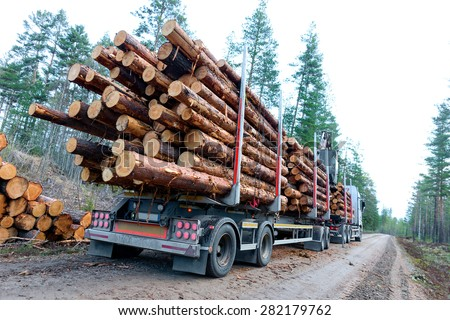 Timber truck just finished loading on small scandinavian dirt road - stock photo