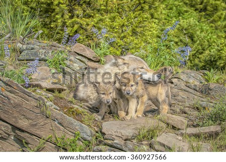 Timber wolf with two cubs at Montana den site.Digital oil painting