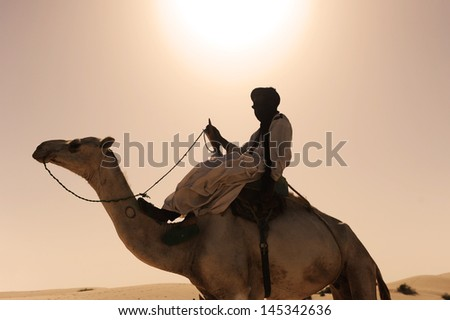 Timbuktu Tuareg camel 2 - stock photo