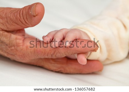 Tiny baby hand holding aged hand of Great Grandma - stock photo