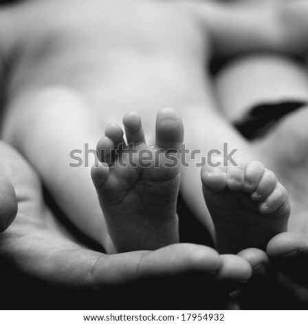 Tiny baby's feet in her father's hand - stock photo