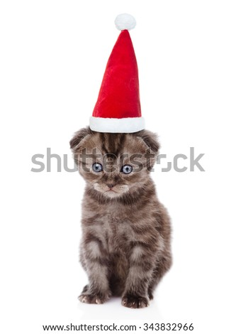 Tiny kitten in red christmas hat looking at camera. isolated on white background - stock photo