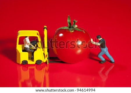 Tiny toy workmen collaborate as team while loading a ripe cherry tomato on to a forklift - stock photo